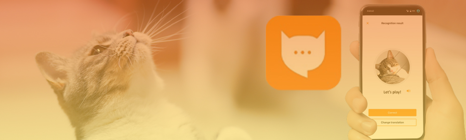 Akvelon |The App That Gives Your Cat A Voice With The Help Of AI  and Machine Learning
